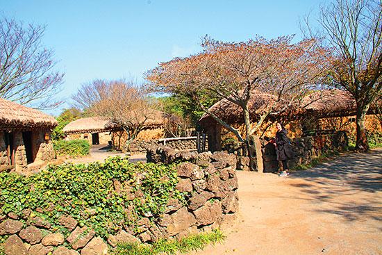 Làng văn hóa dân tộc Jeju, nơi làm phim trường cho bộ phim nổi tiếng Dae Jang Geum.