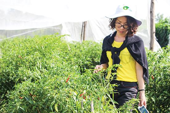 Phạm-Phương-Thảo-tại-trang-trại-2-ha-trồng-rau-hữu-cơ-của-mình