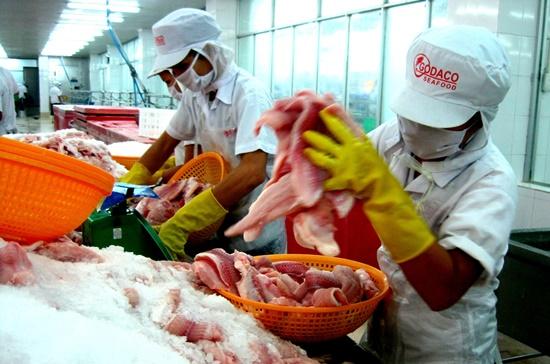 Theo quy định mới, các doanh nghiệp phải đăng ký hợp đồng xuất khẩu với Hiệp hội Cá tra mới được xuất khẩu. Ảnh: Trung Chánh