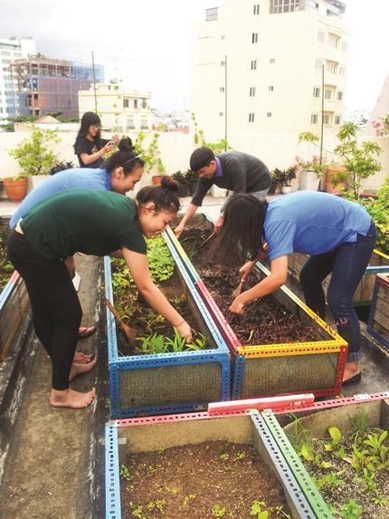 Các bạn trẻ học làm nông tại khu vườn. Ảnh: Trường Trung cấp Du lịch và Khách sạn Saigontourist cung cấp