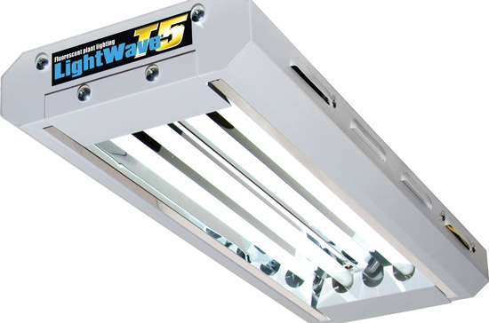 Philips-lightwave-t5-2ft-2-tube-right