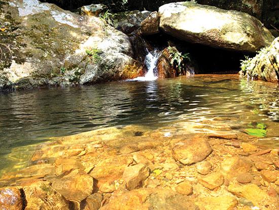 Suối nước trong mát trở thành điểm dừng chân lý tưởng.