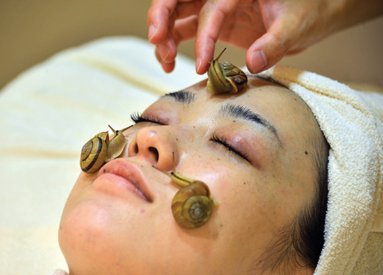 """Snails crawls on the face of a woman for the demonstration of a new beauty treatment at the beauty salon """"Ci:z.Labo"""" in Tokyo on July 13, 2013 as the salon will start the new service from July 15. """"Slime from snails helps remove old cells, heal the skin after sun burn and moisturise it,"""" said Manami Takamura, a beauty salon employee, as she placed three gastropods on a woman's face.   AFP PHOTO / Yoshikazu TSUNO"""