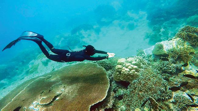Thử thách bản thân cùng lặn biển - Sài Gòn Tiếp Thị