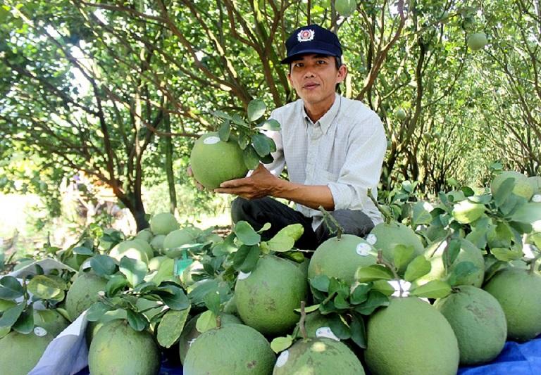 Vườn sinh thái Tam Tân